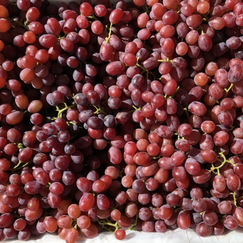Box of Red Grapes